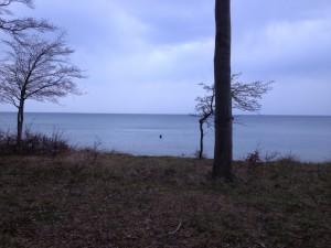 Møn, Nordfeldt strand, girlfishing.dk