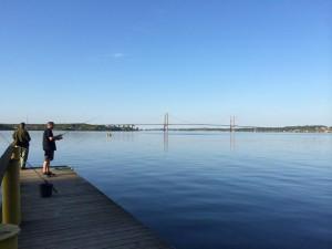 Lillebælt, fiskeri, middelfart, girlfishing.dk