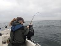 fiskeri, storebælt, girlfishing.dk fladfisk