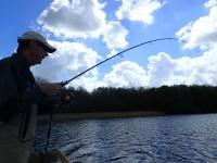 fiskeri gedder girlfishing.dk