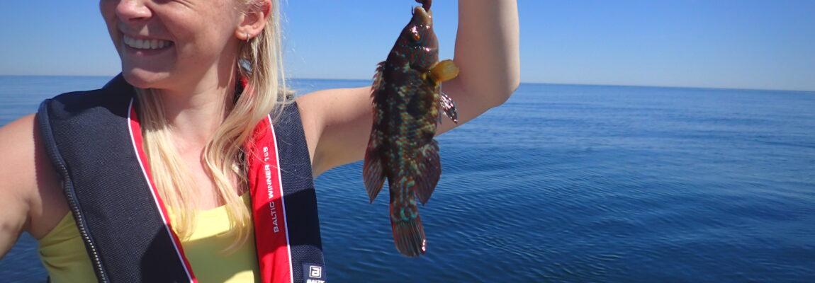 Fladfisketur til Gjerrild strand